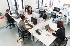 Financial Department Management